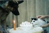 1999年12月3日エル1歳の誕生日