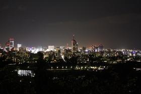 青葉城からの夜景